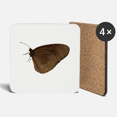 Biology butterfly - Coasters