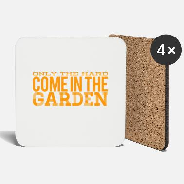 Reward the sky is the reward - Coasters