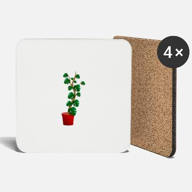 Plant-grounds plant - Coasters