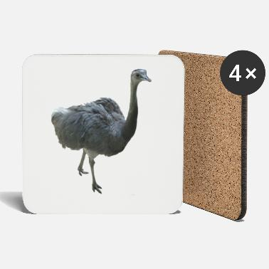 Ghana ostrich - Coasters