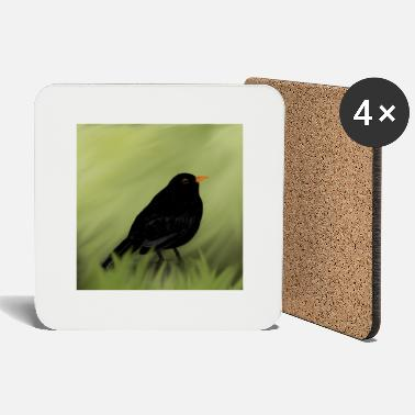Blackbird blackbird - Coasters