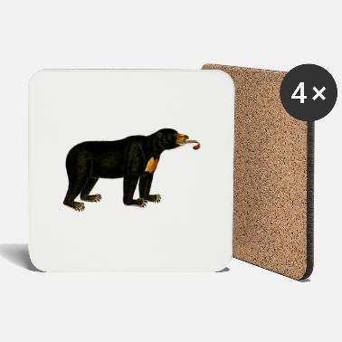 Brown Bear brown bear - Coasters