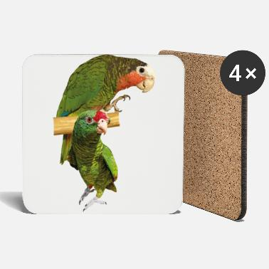 Throat Amazon parrots - Coasters