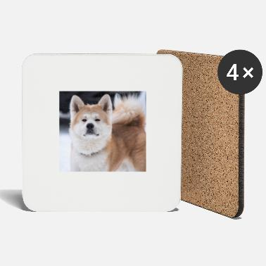 Loyal dog - Coasters