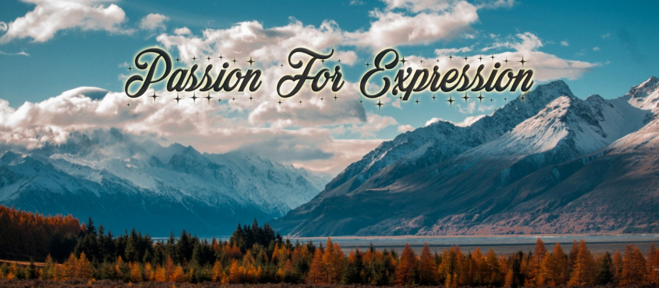 Galerie - Passion for Expression