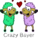 Crazy-Bayer