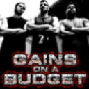 Gains on a budget