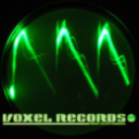VoxelRecords