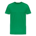 Ireland Flag Ripped Muscles, six pack, chest t-shirt Men's Premium T-Shirt