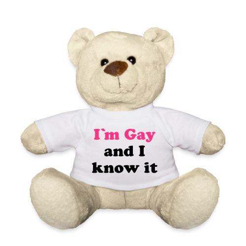 I'm Gay Bear - Teddy Bear