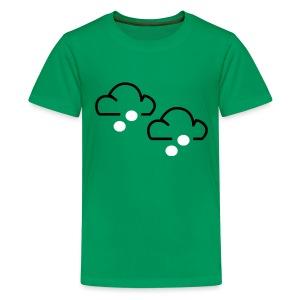 Hail Hail - Teenage Premium T-Shirt