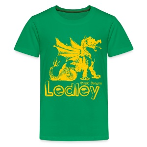 Ledley Celtic Dragon - Teenage Premium T-Shirt