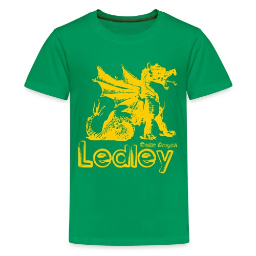 Ledley Celtic Dragon - Teenage Premium T-Shirt