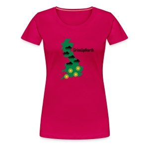 Northern Weather - Women's Premium T-Shirt