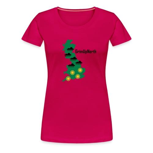 Northern Weather - Women's Premium T-Shirt