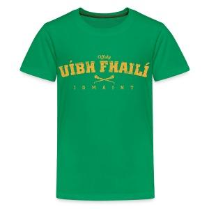 Vintage Offaly Hurling T-Shirt - Teenage Premium T-Shirt