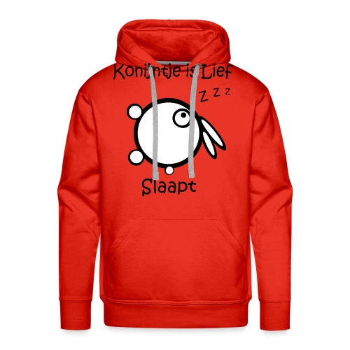 Slaapt - Mannen Premium hoodie