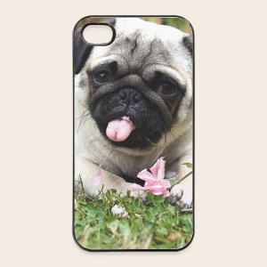 Mops Wiese iPhone 4 / 4 S Hard Case - iPhone 4/4s Hard Case
