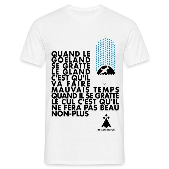 Tee4Tee   Breizh - Bretagne -Bzh - T-shirt Homme c7323bae87f