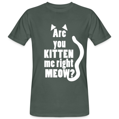 Are you kitten me right meow? - Mannen Bio-T-shirt