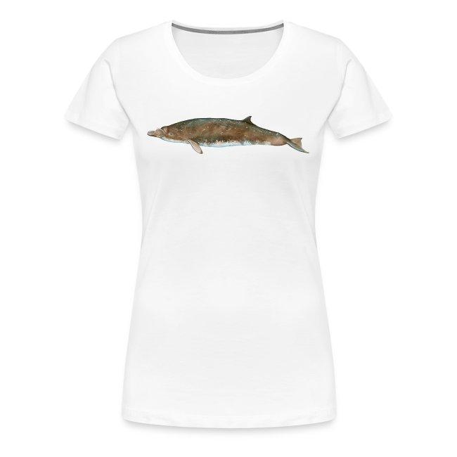 OCEANO Shirt Blainville Schnabelwal