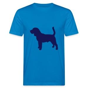 Beagle stehend - Männer Bio-T-Shirt