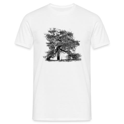 T.Shirt Kiefer . Baum der Mark - Männer T-Shirt