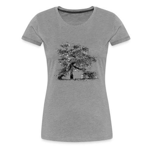 Kiefer - Baum der Mark - Frauen Premium T-Shirt