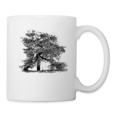 Kiefer - Baum der Mark - Tasse