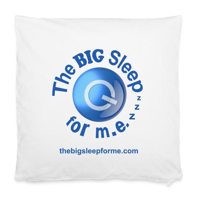 Logo Small Square Pillowcase