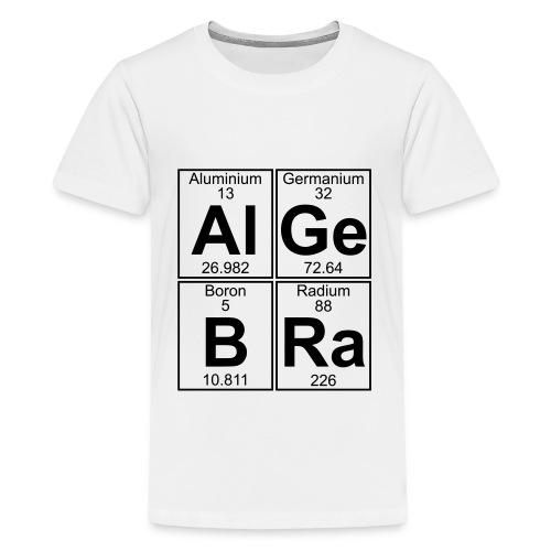 Al-Ge-B-Ra (algebra) - Teenage Premium T-Shirt