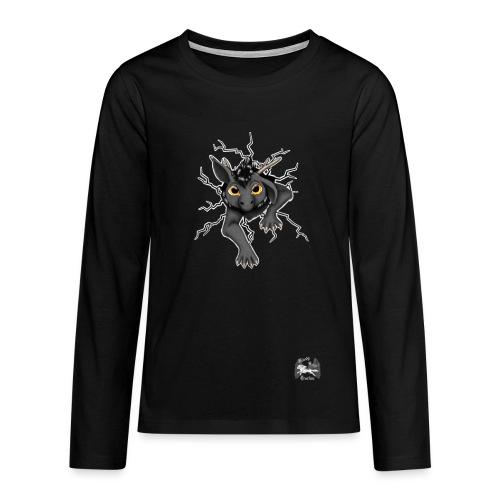 Huch?!- Drachi Dragon stuck grau/grey TeenagerPullover beidseit. Druck - Teenager Premium Langarmshirt