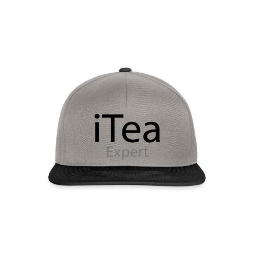 iTea Expert - Snapback Cap