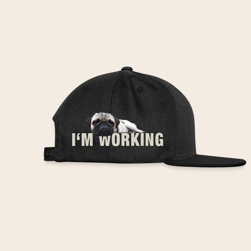 Mops at Work Retro Basecap - Snapback Cap