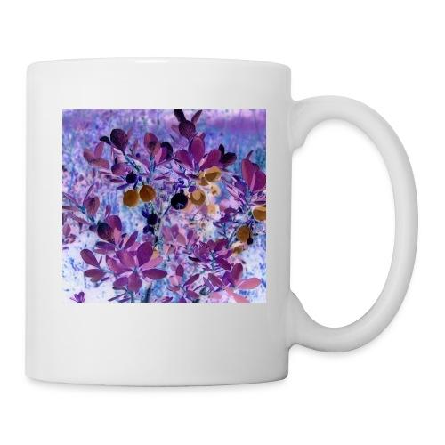 Tasse Blueberry - Tasse