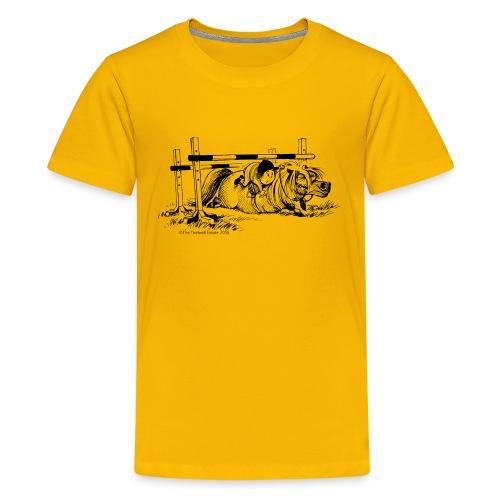 PonyFall Thelwell Cartoon - Teenage Premium T-Shirt