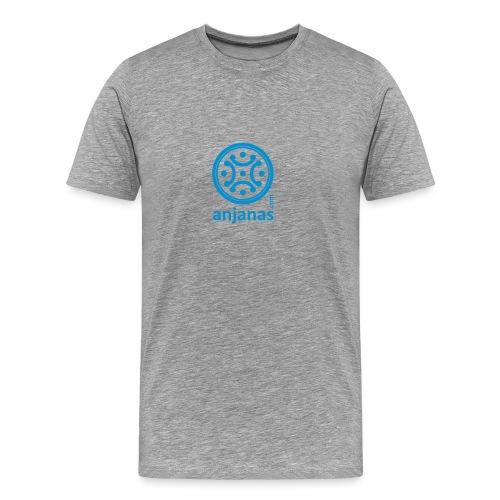 Gris americano chico logo azul - Camiseta premium hombre