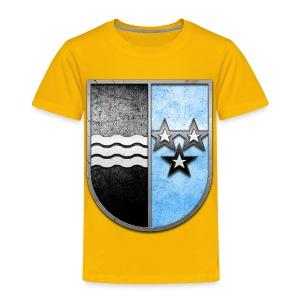 Schweiz Aargau Wappen in Stein gemeißelt - Kinder Premium T-Shirt