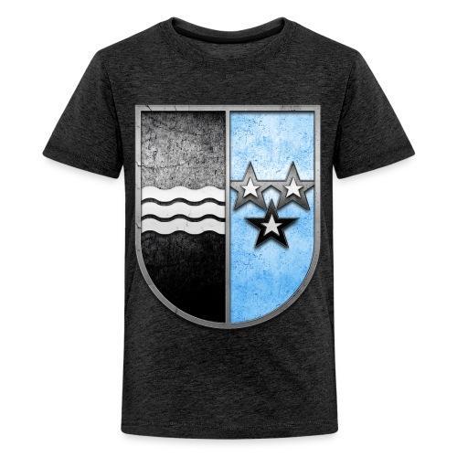 Schweiz Aargau Wappen in Stein gemeißelt - Teenager Premium T-Shirt