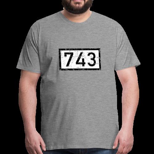 Rheinkilometer 743 Vintage Düsseldorf T-Shirt (Herren) - Männer Premium T-Shirt