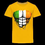 Tee shirts ~ T-shirt Premium Ado ~ Torse musclé drapeau pays Irlande