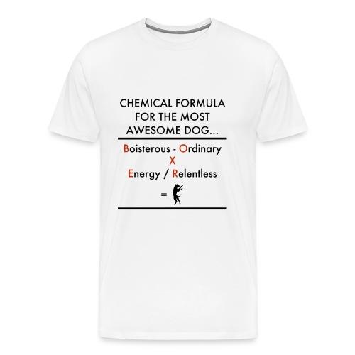 Chem Form Char Wom - Men's Premium T-Shirt