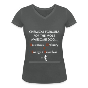 Chem Form Char Wom - Women's Organic V-Neck T-Shirt by Stanley & Stella