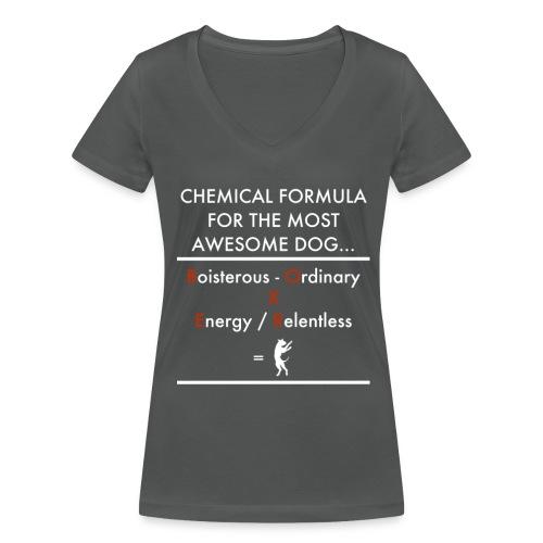 Chem Form Char Wom - Women's Organic V-Neck T-Shirt by Stanley & Stella