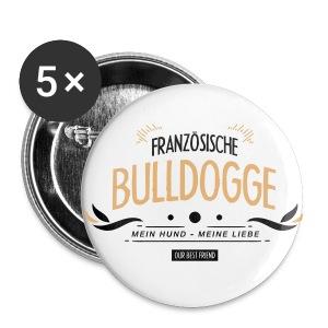 Franzözische Bulldogge
