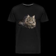 T-Shirts ~ Männer Premium T-Shirt ~ T-Shirt Männer Dolly