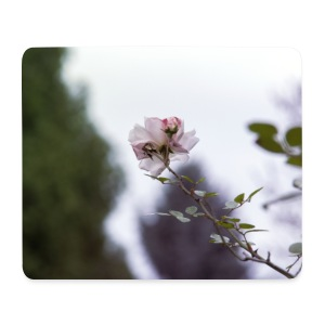 Rose Pad - Mousepad (Querformat)