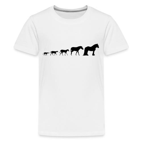 Vanner Evolution - Teenage Premium T-Shirt