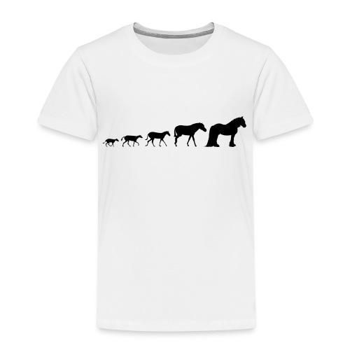 Vanner Evolution - Kids' Premium T-Shirt