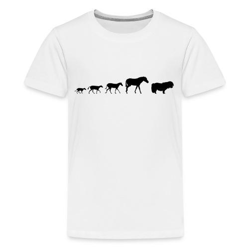Shetland Pony Evolution - Teenage Premium T-Shirt